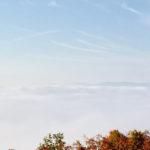 Land for Sale: Asheville, North Carolina
