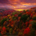 Upcoming Events at the North Carolina Arboretum in Asheville:  Fall 2016