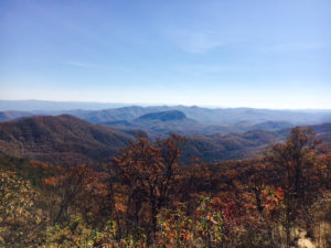 fall-pics-1